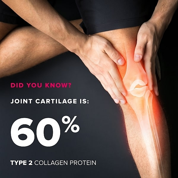 Collagen Type 2 Complete Joint Support